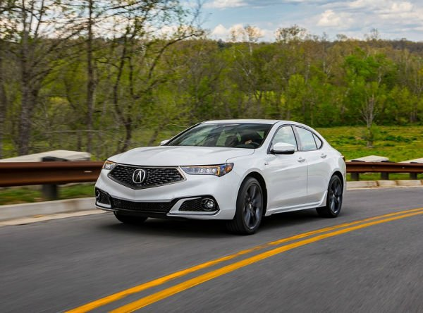 TLX 2019